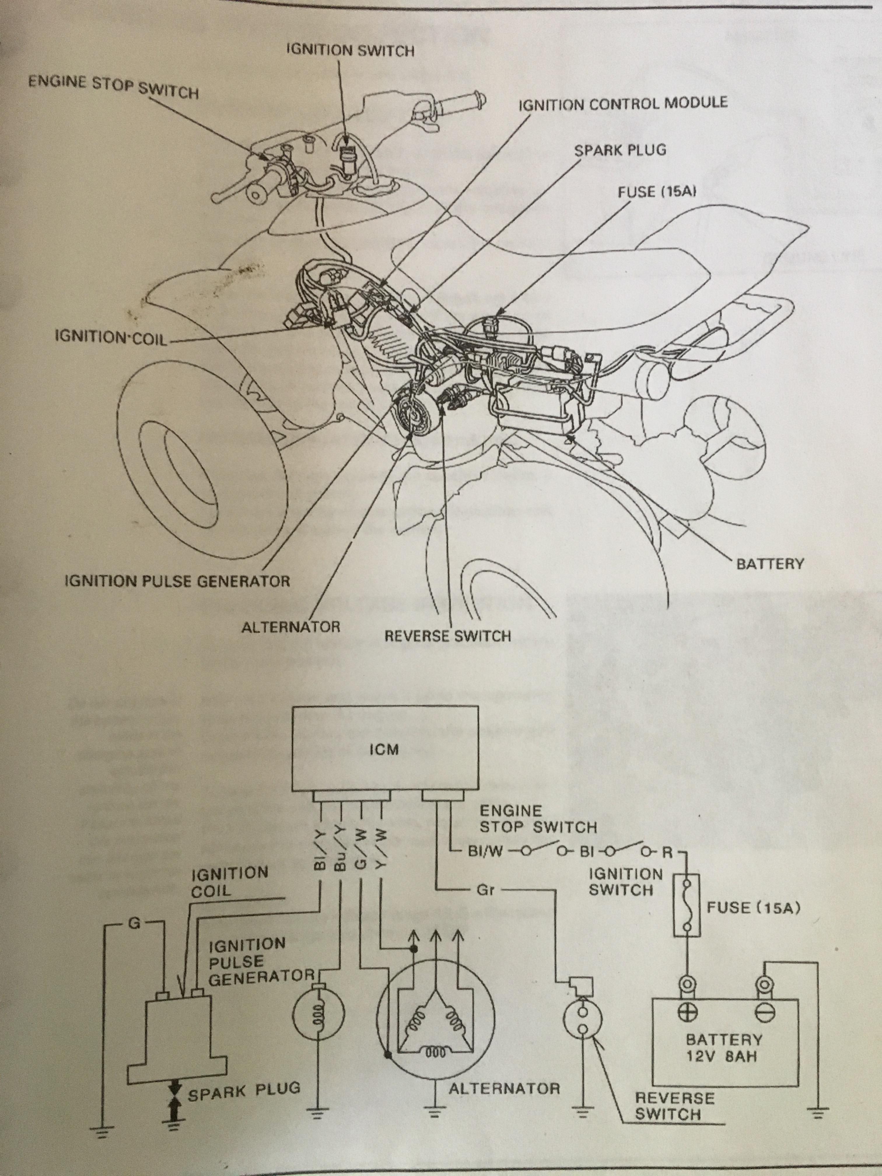 atv spark plug wiring diagram 300ex no spark honda trx atv forum  300ex no spark honda trx atv forum